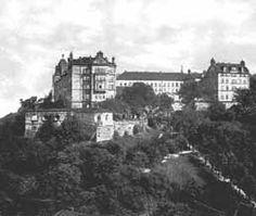 An die frühere Festung und Burganlage Sonnenstein wurde, nach Erlassen Napoleons, eine Anstalt für heilbar erachtete Geisteskranke eröffnet. Diese Anstalt galt lange Zeit als 'Vorzeigeprojekt' der psychiatrischen Arbeit, die hier neue Wege ging. Zurückzuführen war das auf den ersten Direktor und Arz