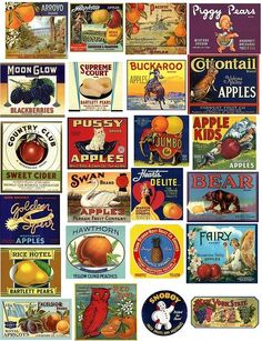 Vintage Fruit Labels - High-Res Scans. Free for art and collage work. These are really large scans.