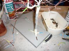 Comment faire un arbre ? - Mooghiscathmaison