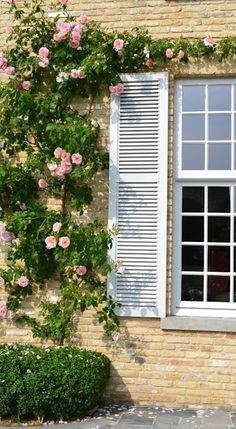 Besides many pictures and names of great roses, there are many french country decorating that are shown when you click on the image.
