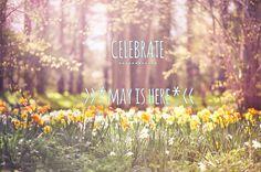 #love #celebrate #MayIsHere #beinspired