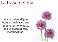 Las 10 Mejores Imágenes De Khalil Gibran Frases Khalil