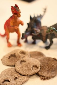 how to make dinosaur fossils from used coffee grounds - plus a book recommendation for your kids to enjoy along with the activity
