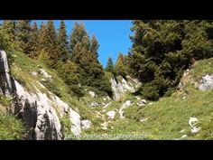 Mystische Landschaft Isenfluh - Sulwald - YouTube