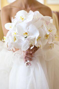#Wedding Bouquet Idea from Bob & Dawn Davis Photography. To see more: http://www.modwedding.com/2013/09/29/photographer-of-the-day-bob-dawn-davis-photography #weddingbouquet