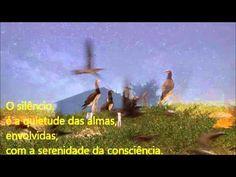 O silêncio - Web Tv Espaço Jorge Guedes