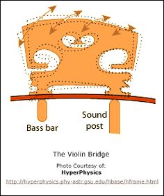 While precisely shaped plates do contribute significantly to the sound produced by a violin, the bridge (Fig. 3), though small in size, has vast effect on the transfer of the sound to these wooden plates. In fact, the bridge is so important in sound production that it is often referred to as the heart of the violin.