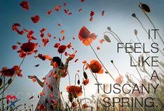 Наконец-то наступила настоящая весна ☀️% #магнифлекс #magniflex #весна #матрас #матрасы #подушка #подушки #ортопедическая #ортопедические #италия #сделановиталии #шоурумвмоскве #шоуруммагнифлекс