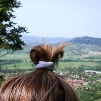 blog avatar Bobby Pins, Hair Accessories, Vegan, Long Hair Styles, Blog, Beauty, Long Hairstyle, Hairpin, Hair Accessory