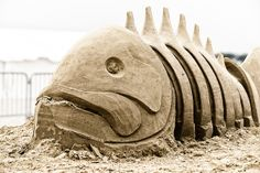 Beached Fish | Flickr - Photo Sharing!