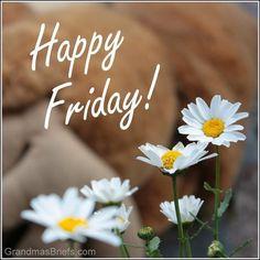 Grandma's Briefs — Home — Happy Friday! Friday Yay, Hello Friday, Finally Friday, Happy Friday, Weekend Quotes, Its Friday Quotes, Friday Humor, Friday Morning Greetings, Friday Wishes