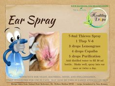 Young Living Essential Oils: Animal Dog Pet Ear Spray Animal Desk Reference - Tap the pin for the most adorable pawtastic fur baby apparel! You'll love the dog clothes and cat clothes! Essential Oils Dogs, Essential Oil Uses, Young Living Essential Oils, Pure Essential, Young Living Pets, Oils For Dogs, Coconut Oil Uses, Yl Oils, Essential Oils