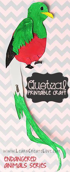 Quetzal Printable Craft   LearnCreateLove.com