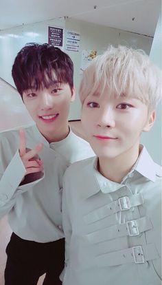 Dino 디노 & Seungkwan 승관 - SEVENTEEN 세븐틴