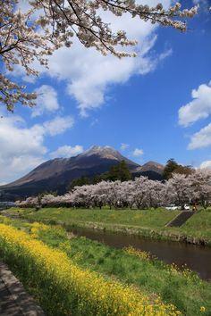 Spring in Yufuin, Oita, Japan