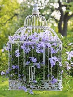 Here's a different spin on hanging floral baskets: An antique bird cage with flowers spilling out from within.