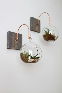 A unique wall hanging mount and complete terrarium.  Wall mount measures: 5 x 5 Terrarium measures: 4 x 4  Single mount and complete terrarium. Shown here in weathered gray.  Complete terrarium includes two small air plants, surrounded by moss and sand. Picture wire on back for quick and easy hanging. Can be mounted from any surface with a simple nail or screw.  Original design by designer Brandy Lewis, all others are copies. Find this wood and copper wall mount without the terrarium…