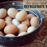Why Do We Refrigerate Eggs in the United States?