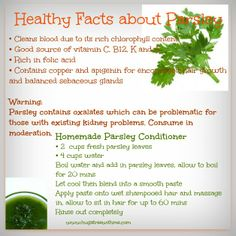Healthy Facts About Parsley ✽✽✽✽ Friend/Follow me on Facebook, I'm always posting awesome stuff & join my great healthy living group for fun, friends, support & daily challenges at www.facebook.com/groups/yourhealthylife.natashak   For healthy recipes all in one place, like my page www.facebook.com/yourhealthyliferecipes  www.natashak.SkinnyFiberPlus.com   Have a FABULOUS day!!✽✽✽✽