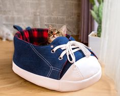 Sneaker Cat Bed in Black and Red Tartan Fleece: Original Cat Furniture and Cat Cave will delight your cats and brighten up your home Dog Beds For Small Dogs, Cool Dog Beds, Cool Pets, Modern Cat Furniture, Pet Furniture, Toy Dog Breeds, Cat Breeds, Blue Sneakers, Unique Animals
