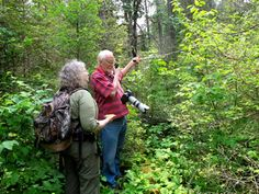 Lynn and Sue looking for radio collared bears.