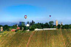 Hot Air Balloons Over A Farm In Southern Wisconsin