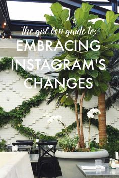 La Petite Fashionista: Girl Boss Guide to Instagram Changes