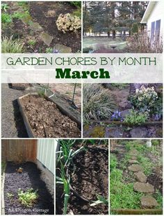 Garden Chores for March - a list for vegetable and flower garden tasks to get you started on the spring season! http://anoregoncottage.com/garden-chores-month-march/