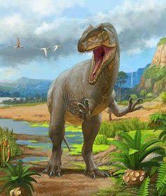 *Allosaurus fragilis.  Art by Sergey Krasovskiy