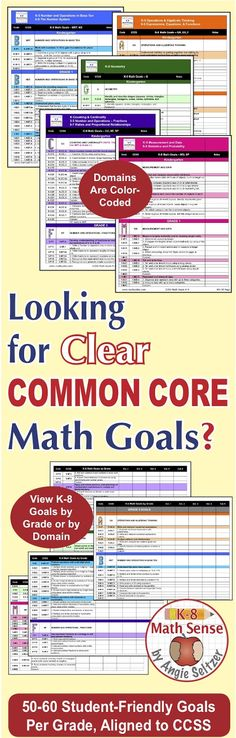 Grade 8 Common Core Math EXCEL Goal Tracker Spreadsheet with Paper