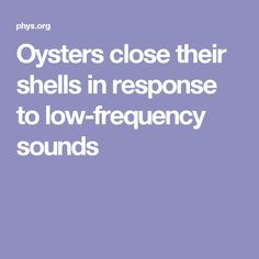 Shell position is an index of welfare in oysters, which keep with their shells wide open when settled but rapidly close them in response to threats or stress. Open Access Journals, Noise Pollution, Open When, Oysters, No Response, Shells, Stress, Conch Shells, Seashells