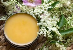 This salve features elderflowers, which are an old-fashioned remedy for softer, more evenly toned skin. Elderflowers are also traditionally used to heal scrapes, scratches and wounds, and as a treatment for dry skin. Natural Medicine, Herbal Medicine, Herbal Remedies, Natural Remedies, Elderberry Flower, Elderberry Growing, Salve Recipes, Herbs For Health, Elderflower