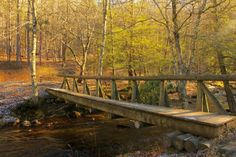 The foot bridge at the intersection of the Seneca Creek Trail and the Judy Springs Trail at Spruce Knob