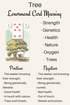 Art illustration: Do you want to know what the meaning of The Lenormand Tree card is? Are you curious what Tree's beginner interpretation might be? Here is how to read The Lenormand Tree card! Includes Tree meanings for love, timing, as a person and more! Tarot Learning, Cartomancy, Out Of Touch, Tarot Spreads, Tarot Readers, Meaning Of Life, Psychic Readings, Card Reading, Tarot Cards