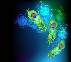 Illustration of bright peacock feathers on a black glowing background vector art, clipart and stock vectors. Vector Clipart, Vector Art, Vectors, Red Gradient Background, Peacock Drawing, Peacock Art, Radhe Krishna Wallpapers, Mickey Mouse Images, Framed Wallpaper