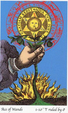 Ace of Wands - Tarot of the Holy Light