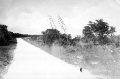 Old Boca Chica road located where the Naval Air Station Key West is located today.