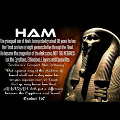 The people who are the descendants of those who were disbursed to the four corners of the earth ARE NOT, I repeat, they are NOT the descendants of Ham!
