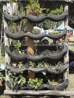 Tyre garden by julietkemp, via Flickr Recycling..conservation...gardening and some engineering (problem solving) cool classroom project