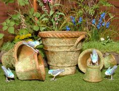 -How Incredible!  All of the little birds surrounding these old pots!