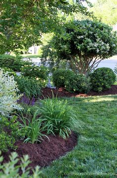 Front Yard Garden Tour from confessionsofaser. Front Yard Garden Tour from conf Garden Shrubs, Diy Garden, Shade Garden, Potager Garden, Garden Beds, Home Landscaping, Front Yard Landscaping, Landscaping Software, Inexpensive Landscaping
