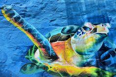http://cdn.c.photoshelter.com/img-get2/I0000hb09OtzU5ys/fit=1000x750/Ecuador-Manta-Pacific-Green-Sea-Turtle-Mural.jpg