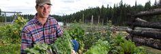 Garden at @siwashlakeranch & @Mag7Lodges #food #garden