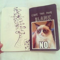 Leave this page blank on purpose. Grumpy Cat No. Journal Inspiration, Journal Ideas, Journal Diary, Bullet Journal, Wreck This Journal, Grumpy Cat, Art Journal Pages, Smash Book, Altered Books
