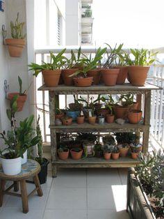 Verde Jardim: Minha varanda, meu jardim