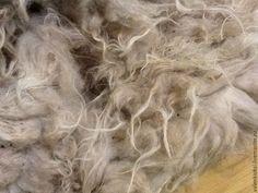 Купить Флис Донских овечек (2 кг)-длинношерстная . - бежевый, шерсть, шерсть овечья