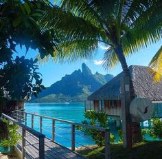 11 Best St Barts Villa Rentals Images St Barts Luxury Villa