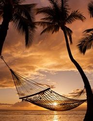 """""""A sunset for you... and a hammock, to laid down and enjoy watching the last whispers of the day... and the first breaths of the night."""" -DLastMermaid"""
