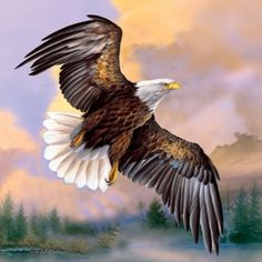 God Shed His Grace Eagle SunsOut 500 Piece Jigsaw Puzzle by Artist Larry Martin, $12.50
