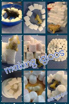 Making igloos with marshmallows and sugar cubes